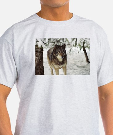 """Red Timber Wolf"" T-Shirt"