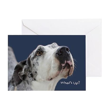 Great Dane Birthday Card Greeting Card