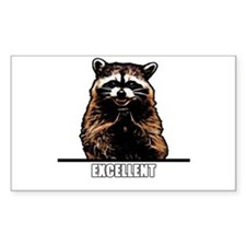 Evil Raccoon Decal