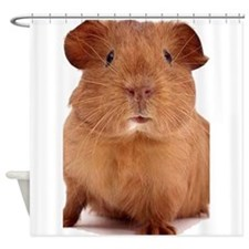 guinea pig face Shower Curtain