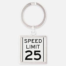 Speed Limit 25 Sign Keychains