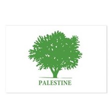 Palestine olive tree Postcards (Package of 8)
