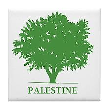 Palestine olive tree Tile Coaster