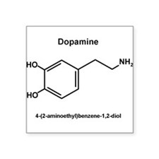 Dopamine Molecule and IUPAC Name Sticker