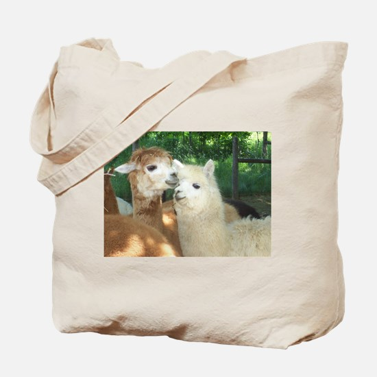 Secrets? Tote Bag