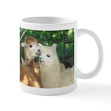Secrets? Mug