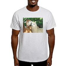 Secrets? T-Shirt
