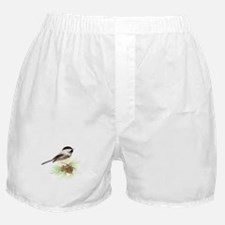 Chickadee Bird on Pine Branch Boxer Shorts
