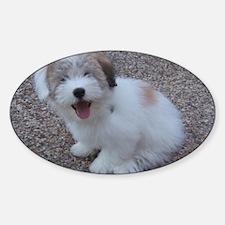 Cute Dog Decal