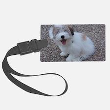 Cute Dog Luggage Tag