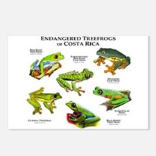 Endangered Tree Frogs of Costa Rica Postcards (Pac