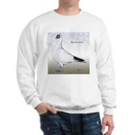 Polish Shortface Pigeon Sweatshirt