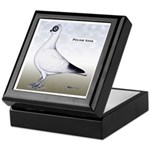 Polish Shortface Pigeon Keepsake Box