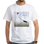 Polish Shortface Pigeon White T-Shirt