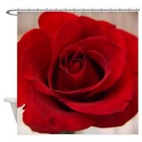 Red rose Shower Curtains