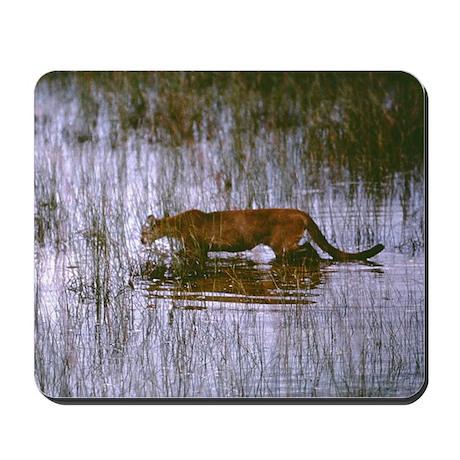 Florida Panther Mousepad