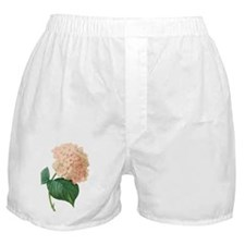 Vintage Pink Hydrangea Hortensia Flow Boxer Shorts