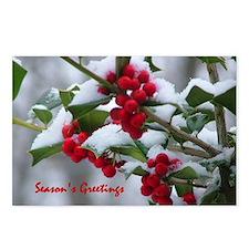 Christmas Berries  Postcards (Package of 8)