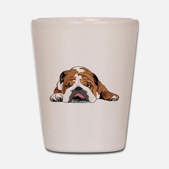 Teddy the English Bulldog Shot Glass