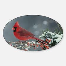 Cardinal  Sticker (Oval)