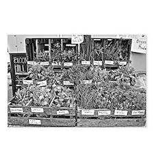 Herb Market Postcards (Package of 8)