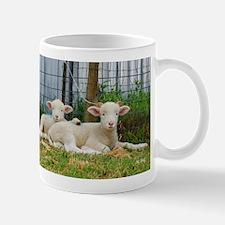 Buddy Lambs-signed by photographer Mug