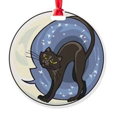 black cat and starry moon Ornament