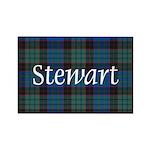 Tartan - Stewart Rectangle Magnet (10 pack)