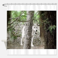 Watchful White Wolf Shower Curtain