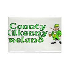 County Kilkenny, Ireland Rectangle Magnet (100 pac