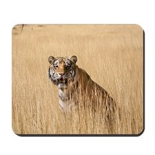 Kipling the tiger in field Mousepad
