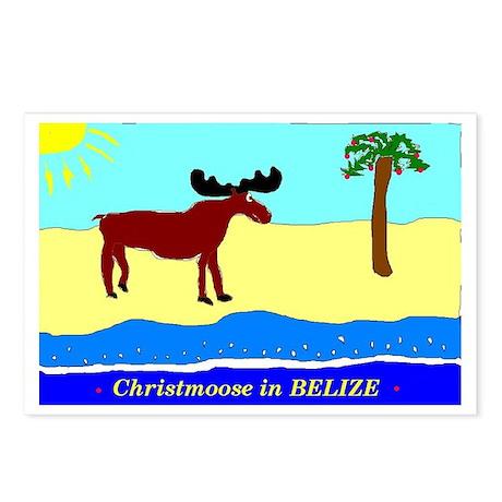 Christmoose in Belize Postcards (Package