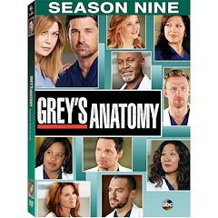 Greys Anatomy: The Complete Season 9 DVD