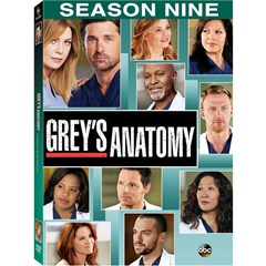Greys Anatomy: The Complete Season 9 DVD