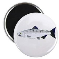 """Chinook King Salmon f 2.25"""" Magnet (100 pack)"""