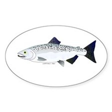 Chinook King Salmon f Decal