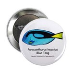 Blue Tang Button
