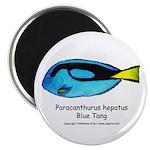 Blue Tang Magnet
