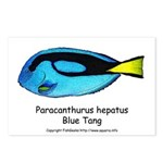 Blue Tang Postcards (Package of 8)