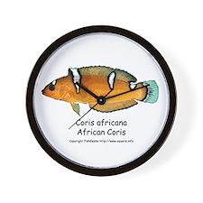 African Coris Wrasse Wall Clock