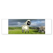 Lamb Bumper Bumper Sticker