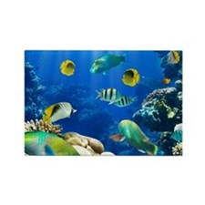 Caribbean paradise, in the sea Rectangle Magnet