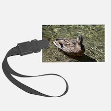 Duck Luggage Tag