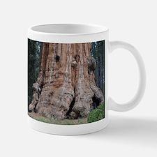 Giant Sequoia Mug