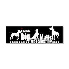BigMuttsBS Car Magnet 10 x 3