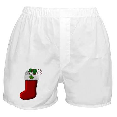 Filled Stocking Boxer Shorts