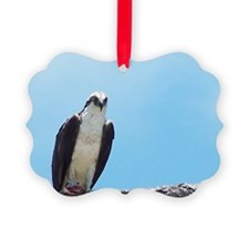 Fort Pickens Osprey Ornament