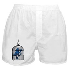 Blue Monster Bird Cage Boxer Shorts
