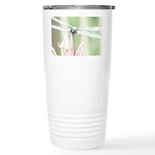 Wakulla Spings Dragonfly font v Travel Mug
