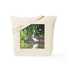 Egret in Wakulla Springs Tote Bag